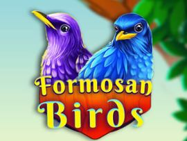 Formosan Birds