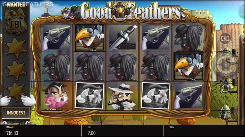 Good Feathers.jpg