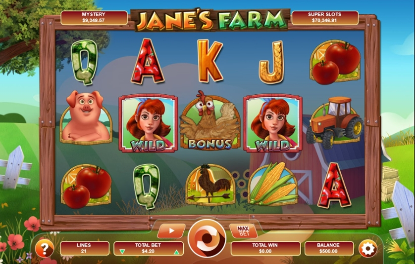 Jane's Farm.jpg