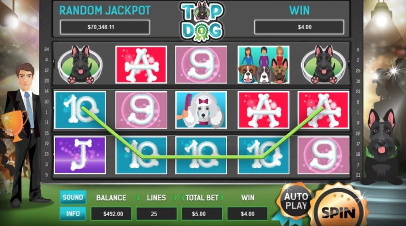 Игровые автоматы dog играть бесплатно регистрация в виннер казино