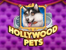 Hollywood Pets