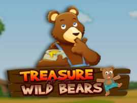Treasure of the Wild Bears