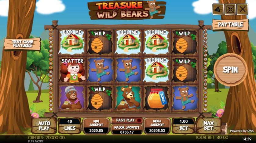 Treasure of the Wild Bears.jpg