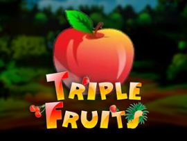 Triple Fruits
