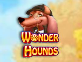 Wonderhounds