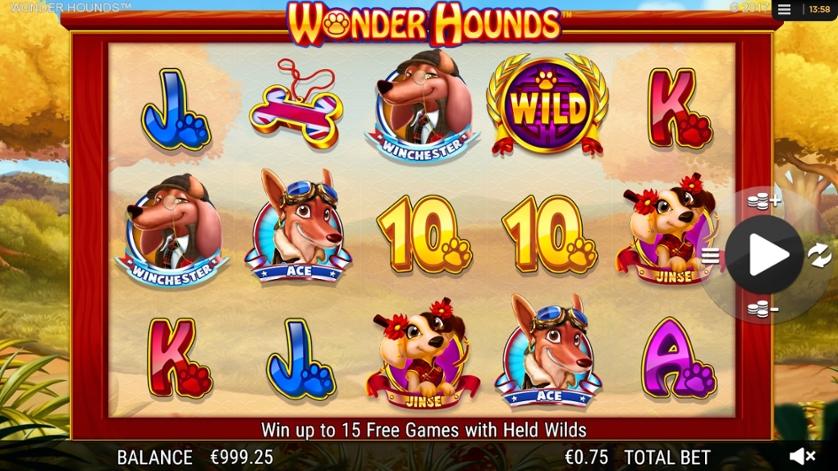 Wonderhounds.jpg