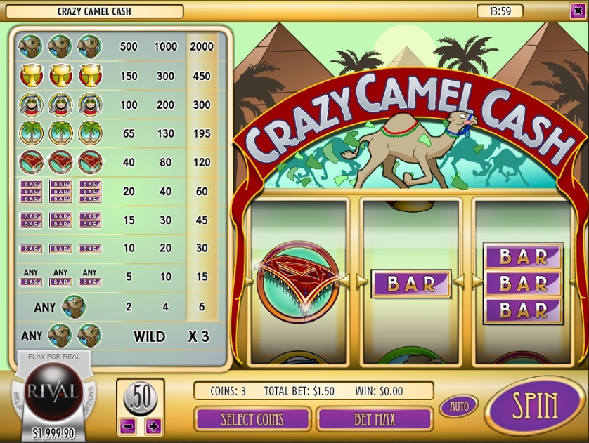 Crazy Camel Cash.jpg