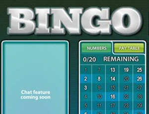 Play Free Instant Bingo Game