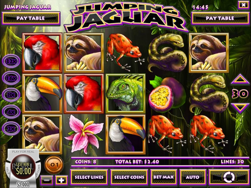Jumping Jaguar.jpg