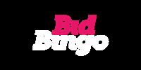 Bid Bingo Casino Logo