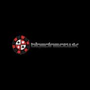 BigSpins.co.uk Logo