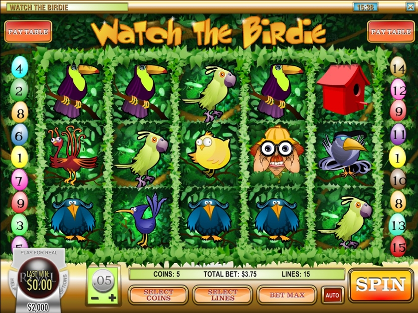 Watch the Birdie.jpg