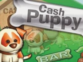 Cash Puppy