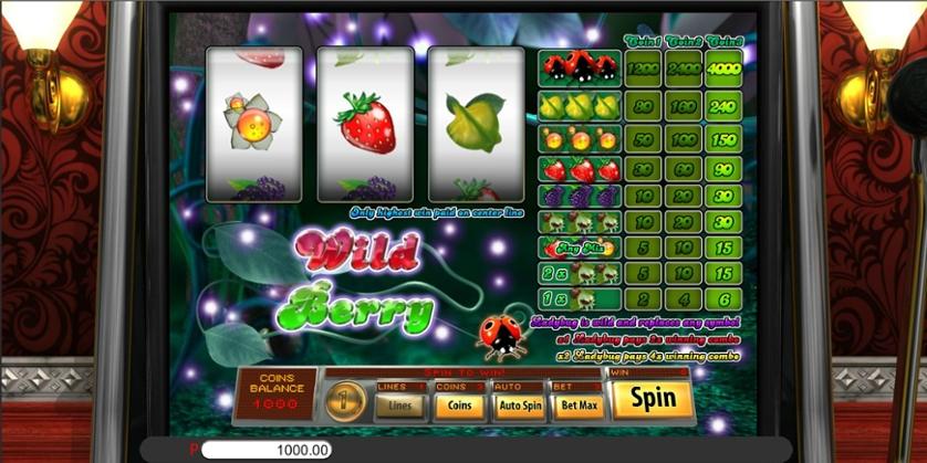 Wild Berry 3 Reel.jpg