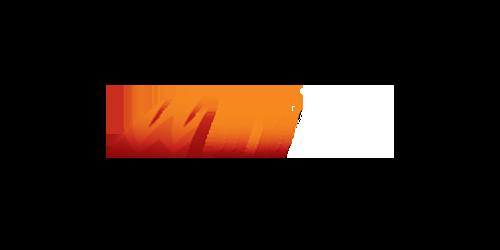 WildSlots Casino Logo