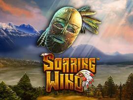 Soaring Wind