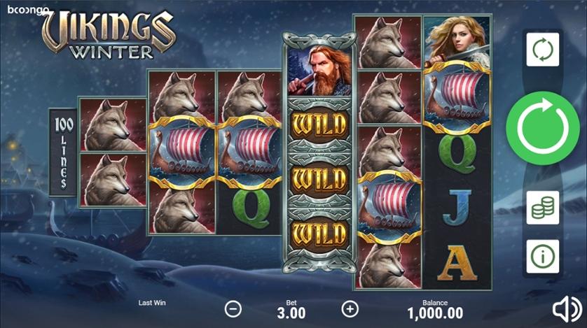 Vikings Winter.jpg