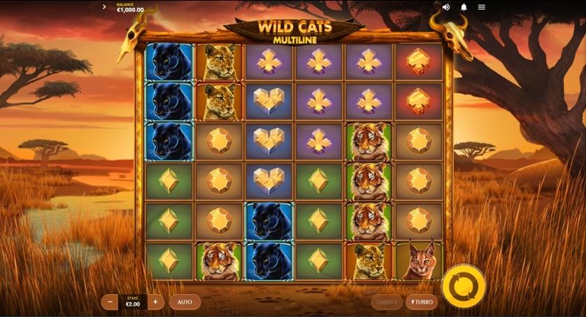 Wild Cats Multiline.jpg