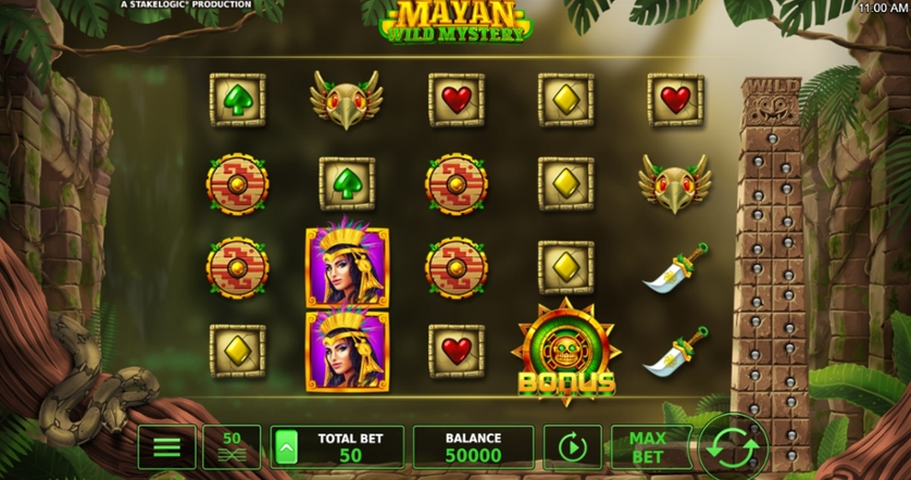 Mayan Wild Mystery.jpg