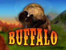 Buffalo Bingo