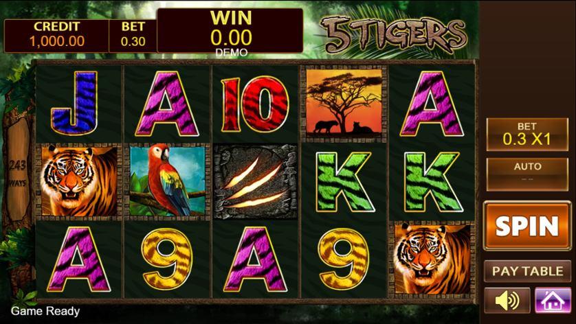 5 Tigers.jpg