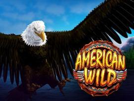 Amerian Wild